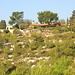 Umgebung der Jugi