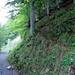Abzweigung des Weges Richtung Alp Unterwand; gut zu sehen, die fröhlich-orangen Markierungen.