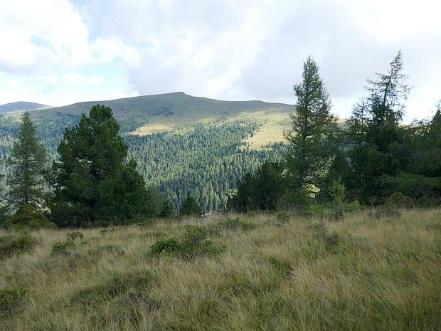 Wanderung im weglosen Gelände