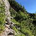 """Im Aufstieg zwischen Logarska dolina und Okrešlj - Südlich des Wasserfalls wird die Steilstufe über einen Pfad und teils über ein Art """"Treppe"""" überwunden."""