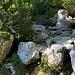 Im Aufstieg zwischen Logarska dolina und Okrešlj - Direkt an der Izvir Savinje (Sann-Quelle) führt unser Weg nochmals über das Flüsschen.