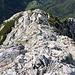 """Im Abstieg von der Velika (Koroška) Baba - Hier westlich des Gipfelaufbaus. Gleich schwenken wir """"scharf links"""" in die Südflanke..."""