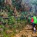 Trekking auf den Mount Kinabalu auf der Insel Borneo.