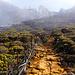 Wanderweg hoch auf den Mount Kinabalu.