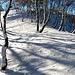<b>Cammino senza sforzo alcuno aprendomi un varco dentro una neve talmente fine e polverosa da sembrare aria solida.</b>