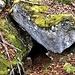 Höhleneingang oben auf dem Burgberg - ist größer als auf dem Bild erscheint