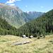 Alpe della Bolla 1647m