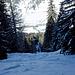 Im Wald fand ich eine Schneise, in der man bis zur Starkstromleitung abfahren kann.