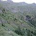 Verso l'Alpe Cardeda