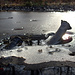 Das wahre Ungeheuer von Loch Ness