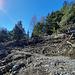 Avalanche dans la branche W du Lüegilchi (Ärbisblatte)