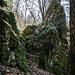 Der Grat läuft bald danach zunächst flach im Wald aus, aber nach dieser freistehenden Felsnadel ...