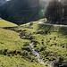 ... zum Gehöft Hintertal. Dort kreuzen wir nochmals die kleine Asphalt-Strasse, die zur Passhöhe Nillhöfe führt und stapfen dann im westlichen Talhang wieder in die Höhe.