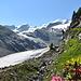 De gletsjer die naar links gaat is Vadret Pers.