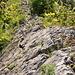 Grat-Detail: Die Kanten sind von den vielen Wanderschuhen (und Hundekrallen) richtig poliert.