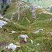 Abstieg vom Gemmenalphorn