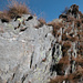 Von Herbstgras durchsetzter Gneis am Peloso-NW-Grat