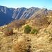 Goldige Tessiner Bergwelt