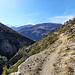 Sentier sur les arides flancs N du Breiterbach.