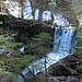Es hat einige Fallstufen und kleine Wasserfälle