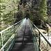 Die Sihlbrücke beim Sihlsprung