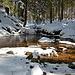 Das kleine Flüsschen mit seinem dunklen Moorwasser bildet im Winter einen schönen Kontrast zum Weiß des Schnees.