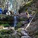 dies ist eine weitere Stufe mit kleinem Wasserfall, an der man rechts aber ohne Hilfen gut raufkommt