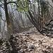 Sentiero per l'Arco di Roccia: qui si abbandona la via marcata a destra passando al centro dei due bolli.