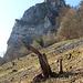 Dachstein mit Kante (VI+, VII-) und Ruine Hausen