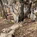 unterhalb P. 1099 beginnt der wunderschöne Schluchtweg in der Côte aux Boeufs