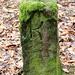 Königlich Sächsischer Forstgrenzstein K 32