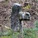Mord- oder Sühnekreuz, es befindet sich derzeit in einer umzäunten Schonung, offenbar trägt es auch die dreizinkige Heugabel