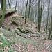 Sturzbachrinne, bei Starkregen hat es mehrfach Fluten von den oberhalb liegenden Feldern gegeben, die eine Schneise in die Talbebauung gerissen haben.