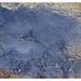Satellitenaufnahme aus 1,5 Mio. µm Höhe