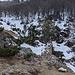 Alpe Noresso di Loggio, da qui mi riporto sul percorso dell'andata