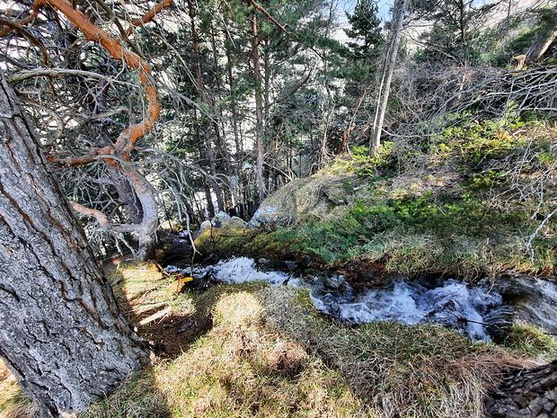 A Ritini, la fin du bisse de Hauptwasser.<br /><br />Celui-ci se jette du haut de la falaise pour rejoindre le cours du Feschilju.
