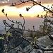 Nachhause fahre ich über die Schwarzwald-Hochstraße und mache zwischendrin  dort Halt, von wo wir auch sonntags gestartet waren. Denn heut ist das Licht schön und ich stapfe nochmal hoch zum Aussichtspunt Felsenblick am Omerskopf, um dort bissel Rheinebene mit Sonnenuntergang einzufangen.