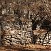 Die schönen Trockenmauern der Terassen