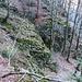 Wenn man in den Waldflanken drin ist, präsentiert sich der Schwarzwald felsiger als es auf der Durchreise den Anschein macht