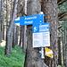 Abzweigung Richtung Axenrüti und Buggi(grat).<br />Wir bleiben vorläufig noch auf der wrw-Variante Richtung Franzenalp.