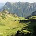 Erster Blick ins Riemenstaldner Tal. Hinten links der Fronalpstock (1921 m), rechts vorne der markante Holzerstock (1772 m), an seinem linken Fuss das Butzenseeli.<br />
