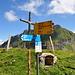 Hier, auf dem Sattel über Schön Chulm, endet der blauweisse Streckenteil offiziell.
