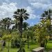 Jardin botanique de Madère