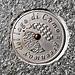 Logo della Greenway. Lungo tutto il percorso numerosi di questi dischi metallici sono inseriti nelle piode che costituiscono il lastricato del percorso