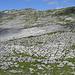 la dorsale che separa le due valli parallele di Charetalp e Chilchbüelen
