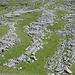 campi carreggiati: come muretti di un terrazzamento