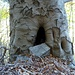 ♫♬♫ Gimme Shelter ♬♫♬<br />[https://www.youtube.com/watch?v=clGX_J19_9o]