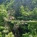 """""""Gisoeul del Pich"""" e ponte di Val Mala"""