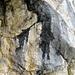 Detail aus der Felswand II