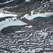 Neuschnee und Altschnee